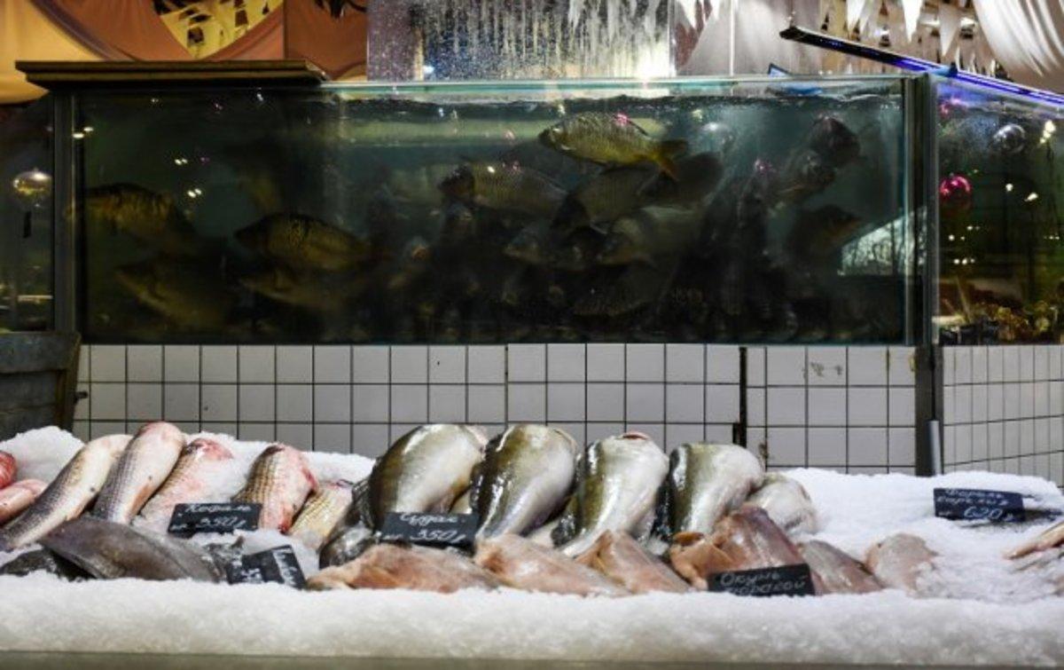 В аэропорту «Шереметьево» задержано 580 кг рыбы из Армении