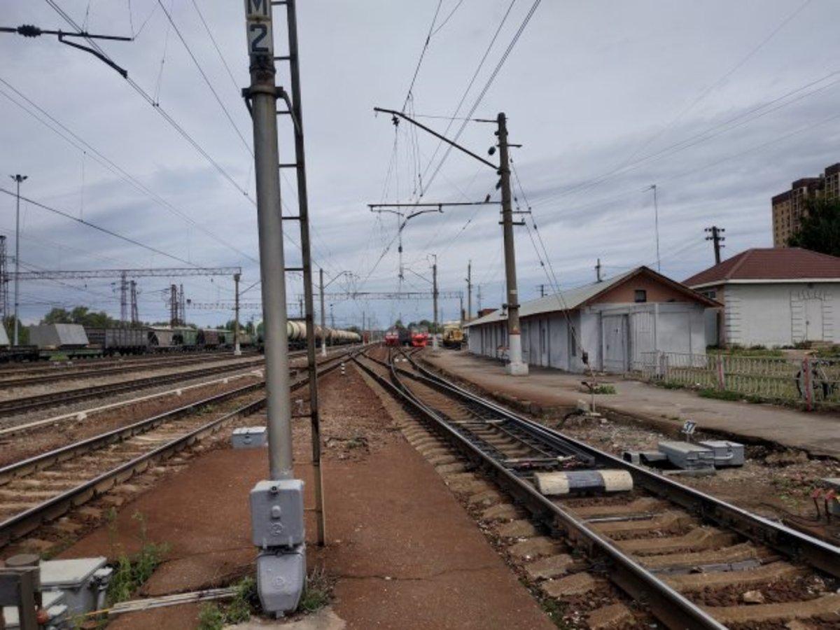 В Подмосковье на ж/д станции Россельхознадзор выявил перевозку опасной продукции из Дубны