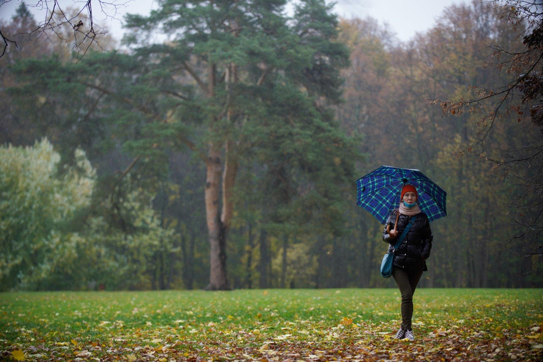 Жителей Московской области предупредили о сильном дожде и ветре 8 мая